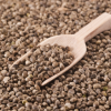 Hemp Seeds – A Breakthrough for Natural Protein?