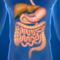 Stomach Acid Truths, Myths and Remedies